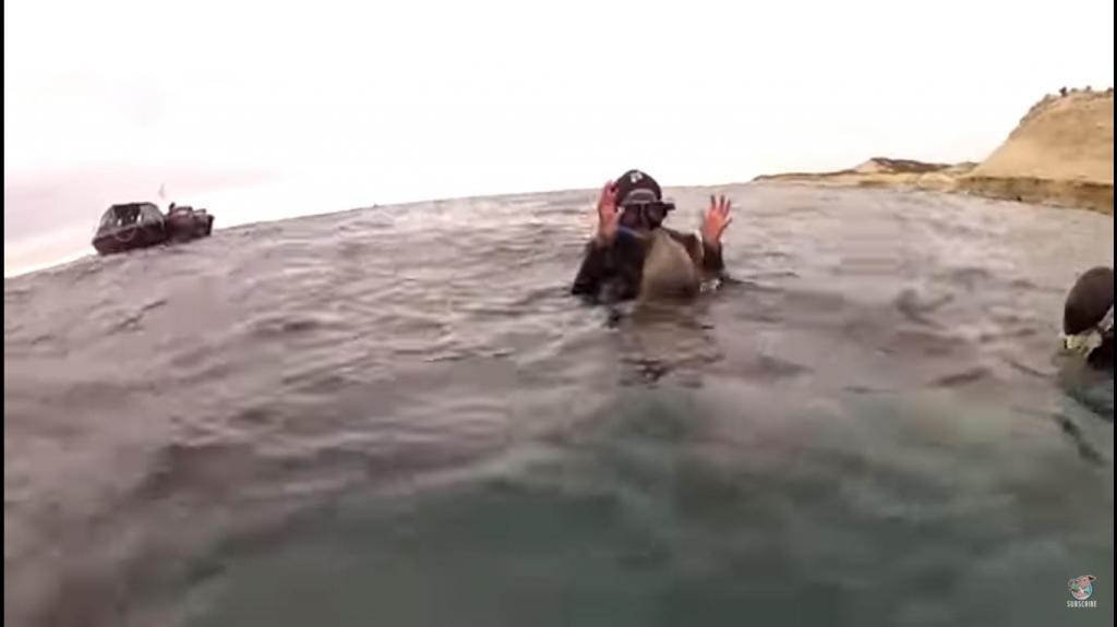 Дайверы были готовы к погружению. Но тут их окружили детеныши тюленей, у которых были свои планы