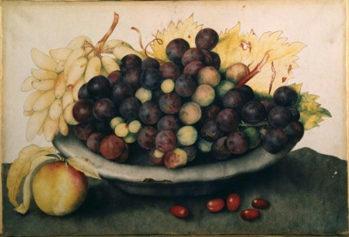 27 картин XVII века, на которых изображены фрукты того времени