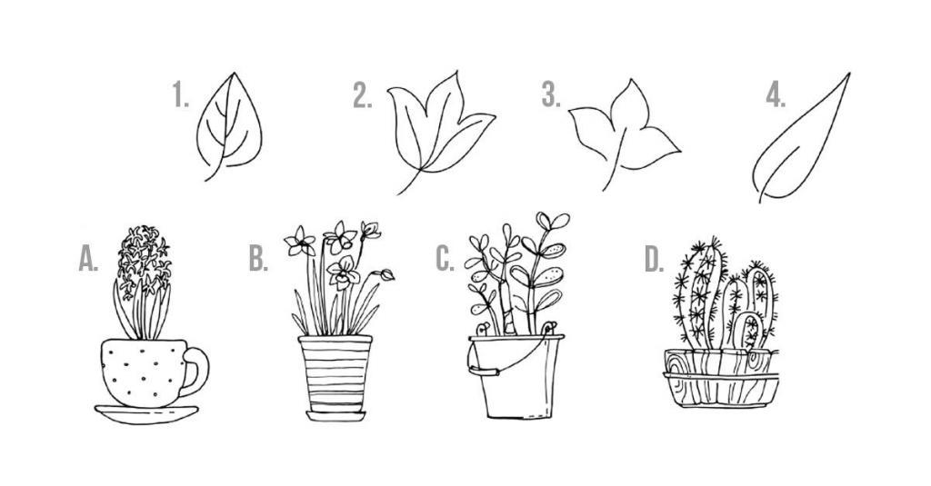 Будущее — чистый лист для рисования. Составив комбинацию цветок/горшок, узнаете, на что сделать акцент на следующей неделе