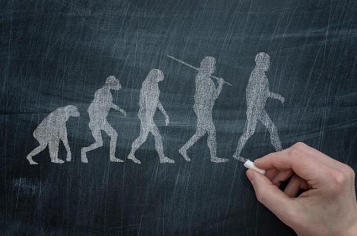 Труд сделал из обезьяны человека: 10 странных утверждений, опровергающих эволюцию