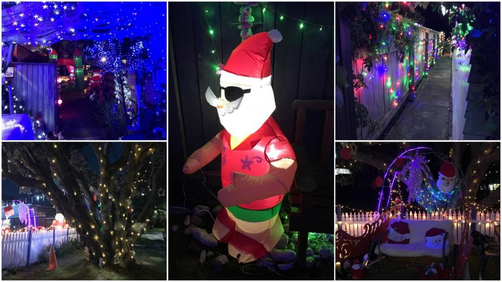 «Мы делаем это для себя, но соседи могут прийти и посмотреть»: пара повесила 40 000 рождественских лампочек у себя во дворе