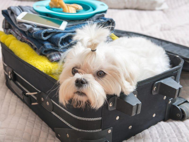 Сотрудники делятся советом, что не стоит делать во время пребывания в отеле: не спать на декоративных подушках, их почти не стирают