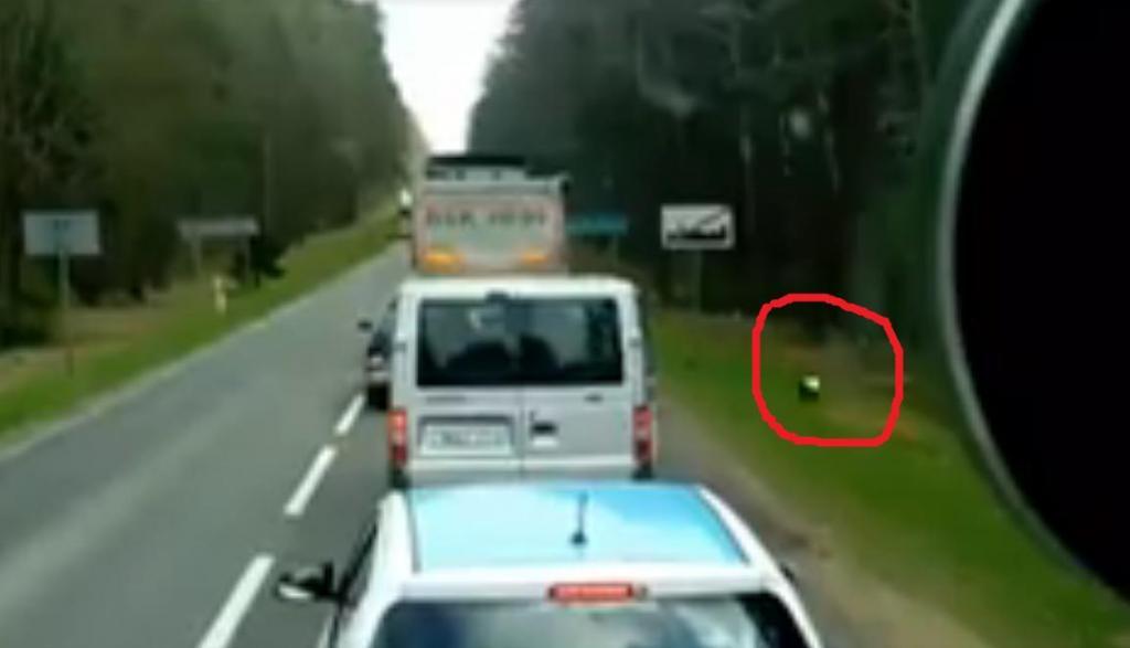 Туристы начали выбрасывать мусор через окно автобуса: водитель вышел из машины и преподал им урок