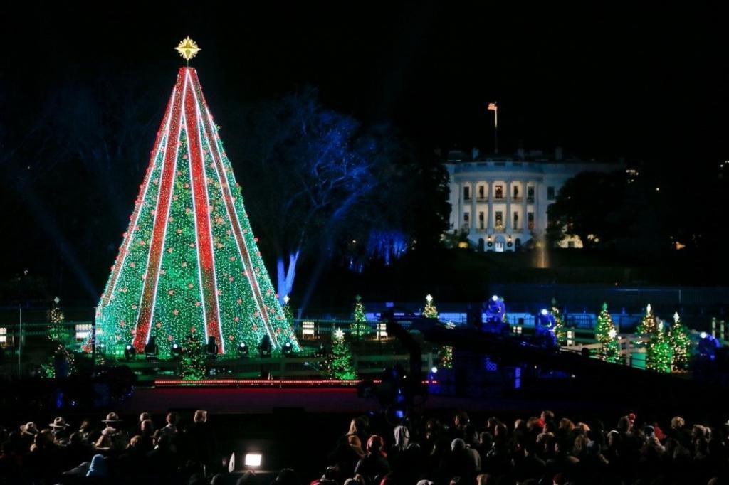 Эксперты подсчитали, сколько стоят знаменитые новогодние елки в Нью-Йорке и Вашингтоне