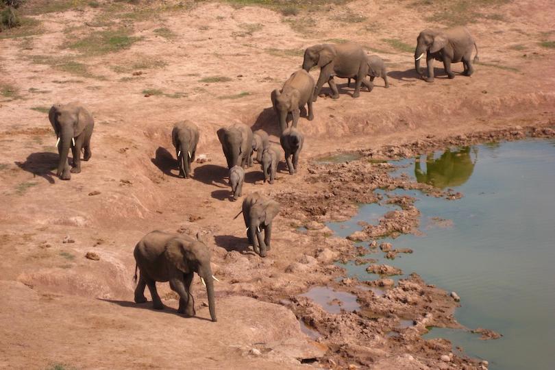 10 самых красивых национальных парков Южной Африки, на которые стремятся посмотреть путешественники всей планеты