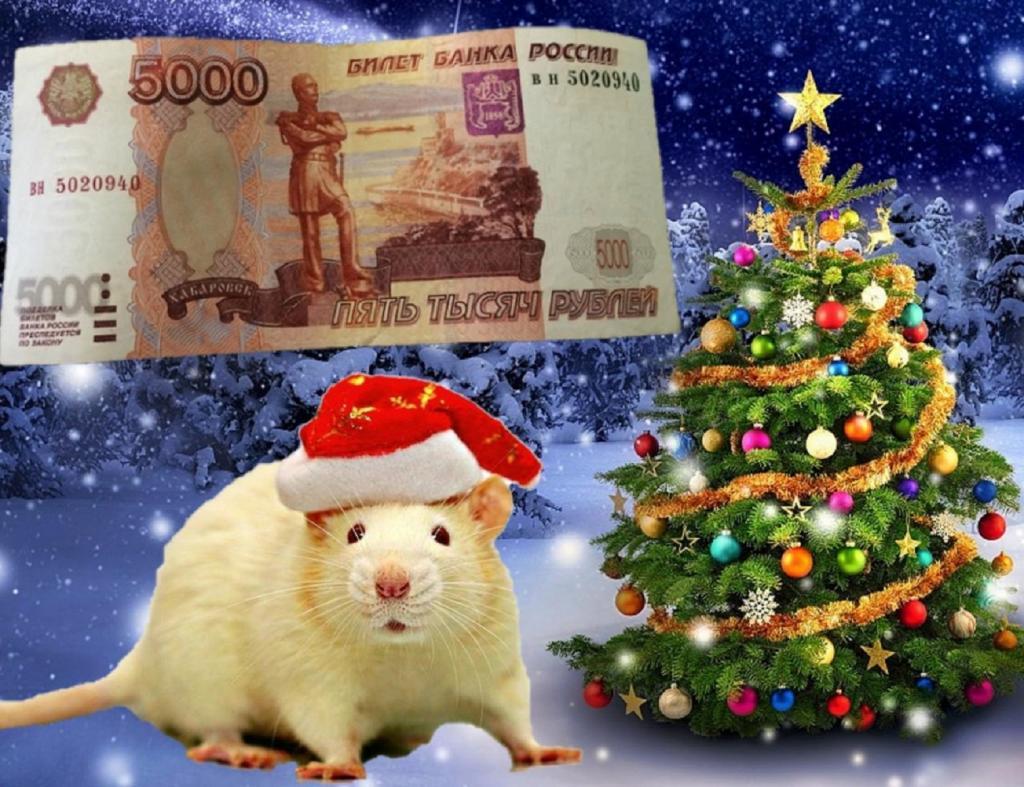 Поставьте свинину на праздничный стол, положите наличные в кошелек и другие самые популярные суеверия на Новый год