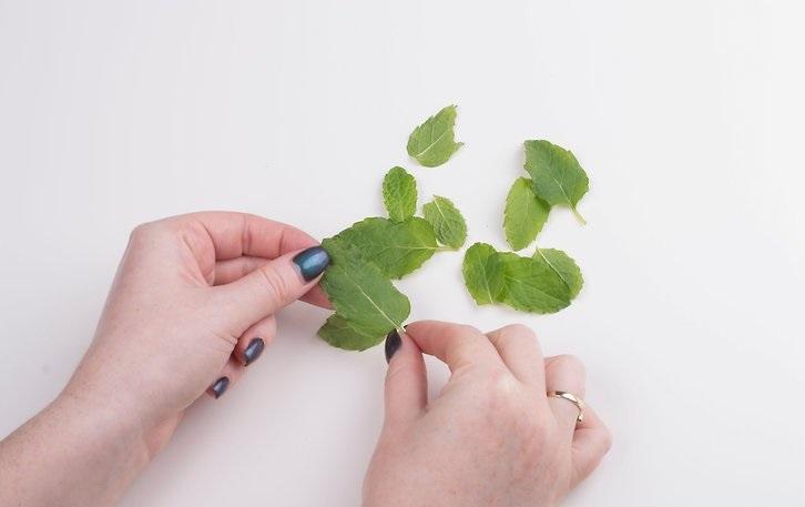 Как сделать цукаты из листьев мяты: необычное освежающее лакомство
