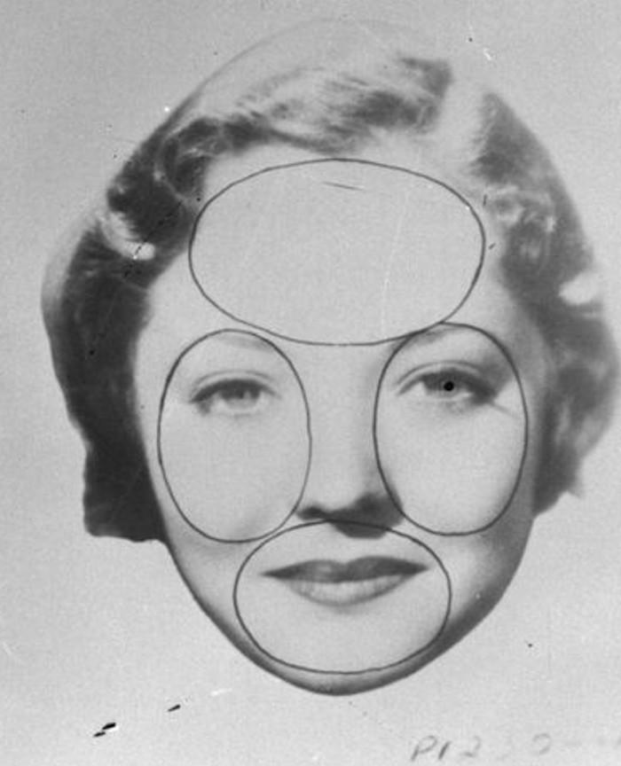 Три носа в длину и два в ширину. Насколько пропорции вашего лица идеальны по диаграмме визажистов 1933 года