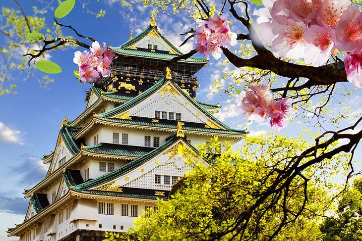 Популярные достопримечательности Осаки: чем прославился замок Осака