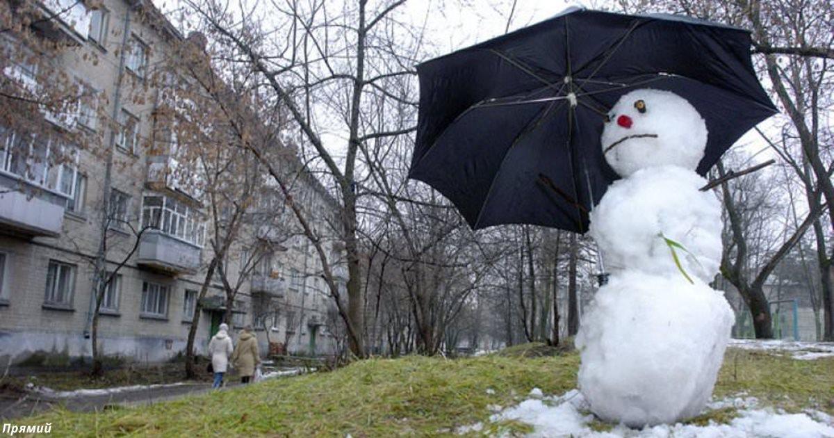 До 17 тепла: Весна в этом году придёт уже в феврале
