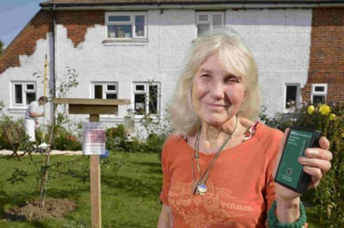 Покрасила дом в 4 слоя антилучевой краской: у бабушки проявляется аллергия, если рядом работает Wi-Fi