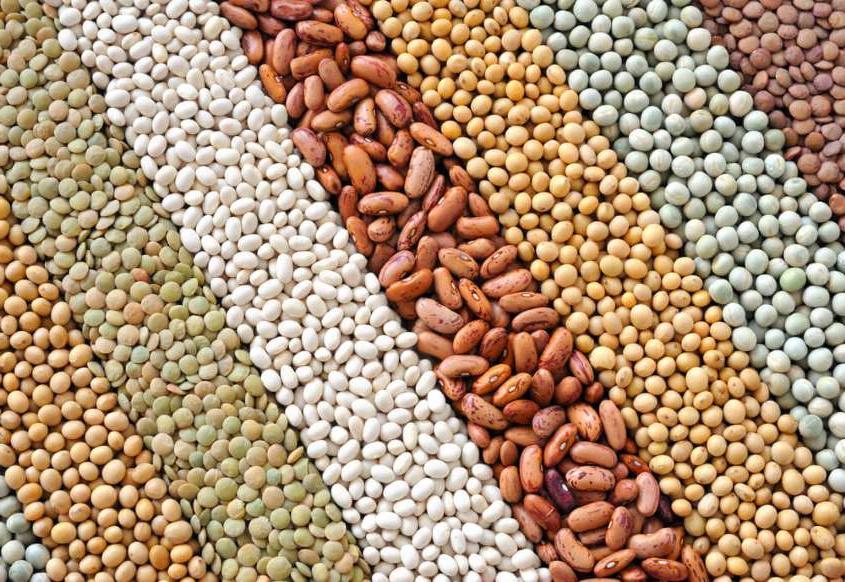 Обычные продукты из супермаркета, с помощью которых можно сбросить до 5 кг в неделю: бобовые, цветная капуста и не только
