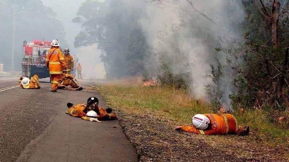 20 фотографий из Австралии, которые разбили сердце даже фотографу