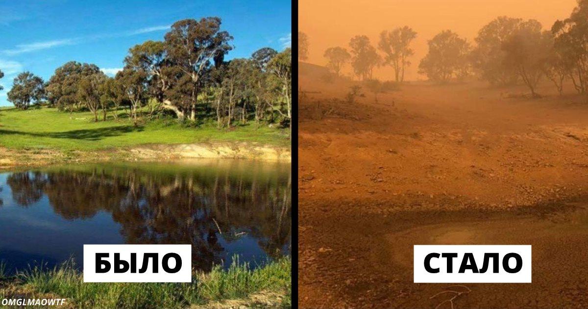 19 фото до и после пожаров в Австралии, которые показывают весь ужас случившегося