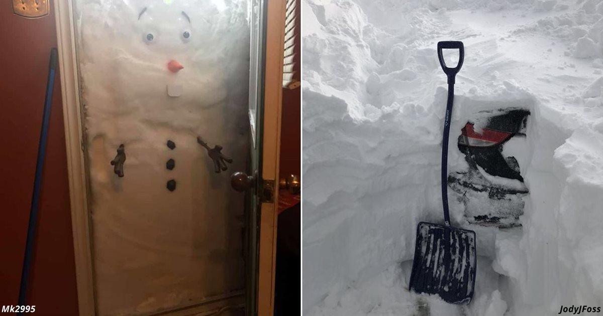 Канаду завалило снегом. Вот самые смешные фото оттуда