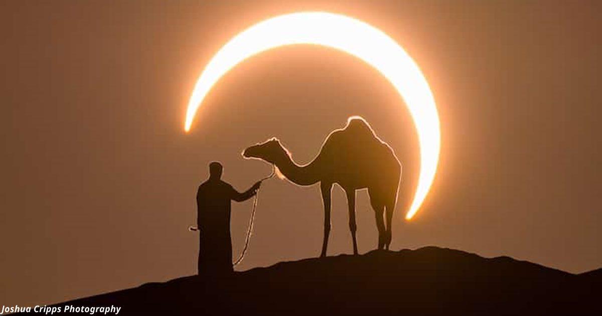 Фотофакт: Затмение и мужик с верблюдом в пустыне