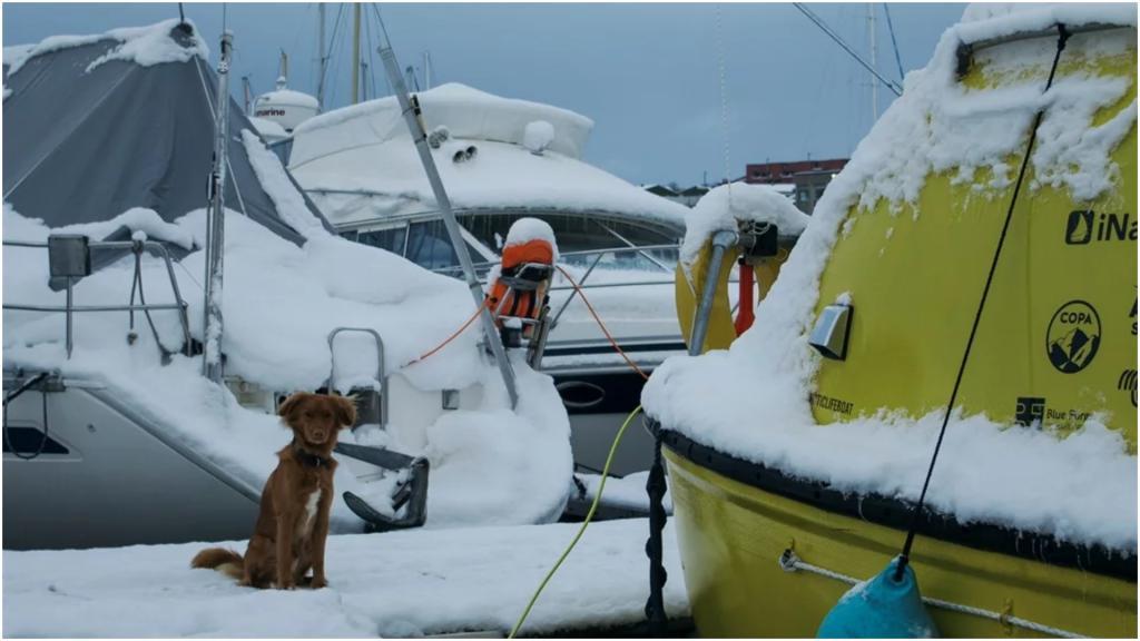 Два архитектора и собака: они переделали спасательную лодку и поплыли покорять мечту
