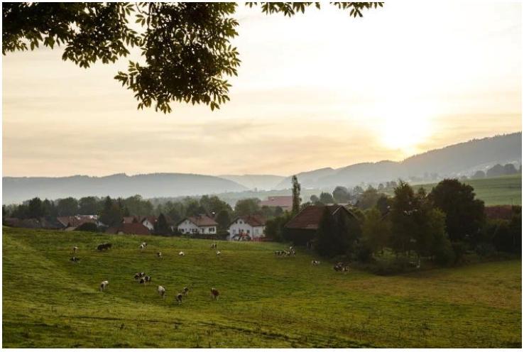 Потрясающие озера, водопады, известняковые скалы, пещеры, исторические деревни: удивительный отдых в департаменте Юра (Франция)