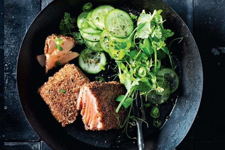 Лосось с египетской приправой дукка и салатом из огурцов и чили. Вкусно и крайне полезно