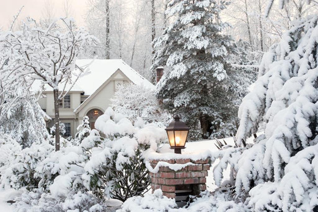 И пусть идет снег... Как сделать свой приусадебный участок нарядным и привлекательным зимой