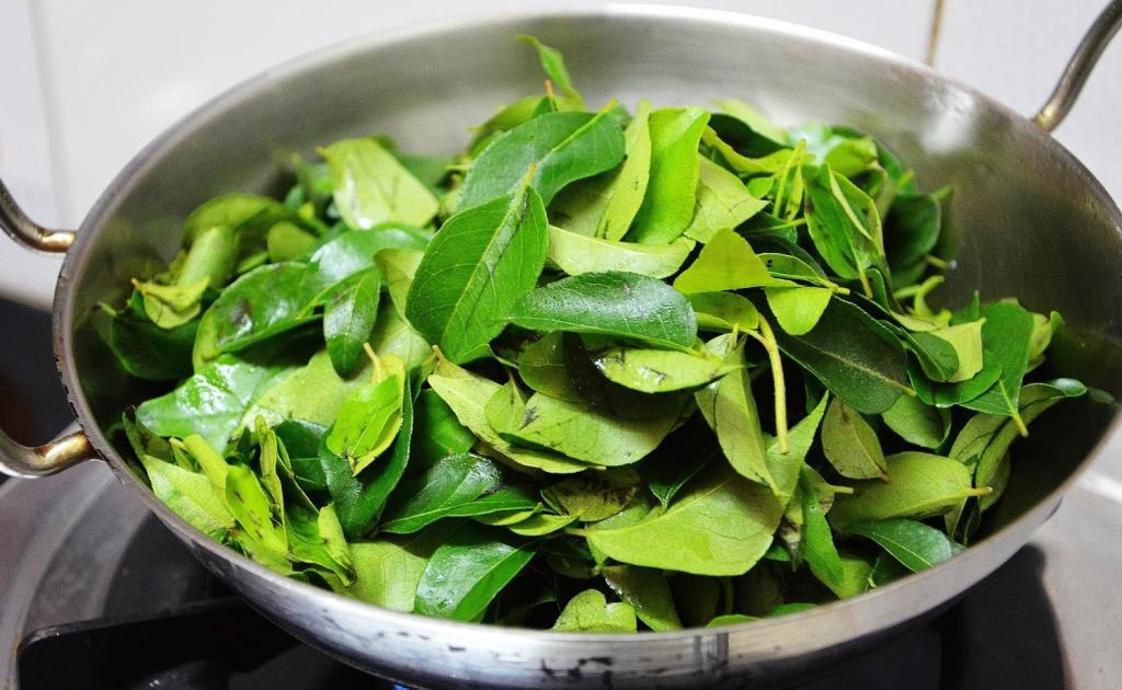 Благодаря рецепту трихолога отрастила шикарную шевелюру за 3 месяца: для этого понадобились лишь листья карри