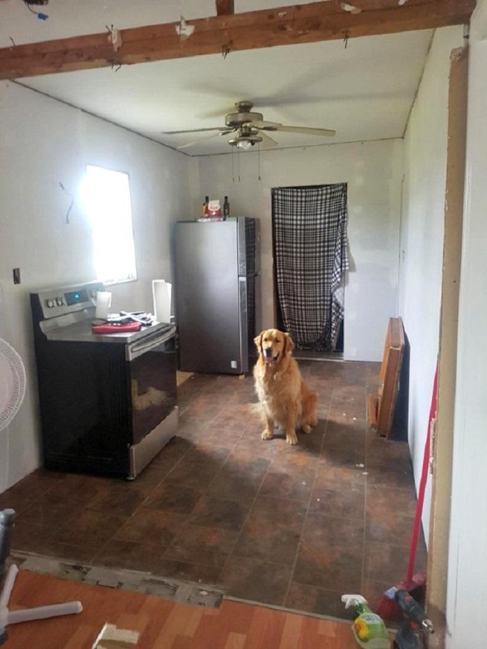 Несмотря на небольшой бюджет семья отремонтировала кухню, отдав предпочтение темным цветам