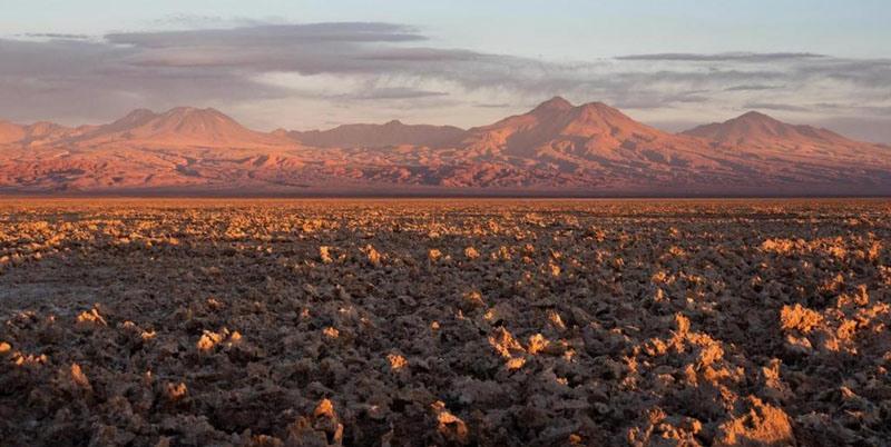 Ученые нашли скрытую жизнь в пустыне Атакама: лишайники, водоросли и другие