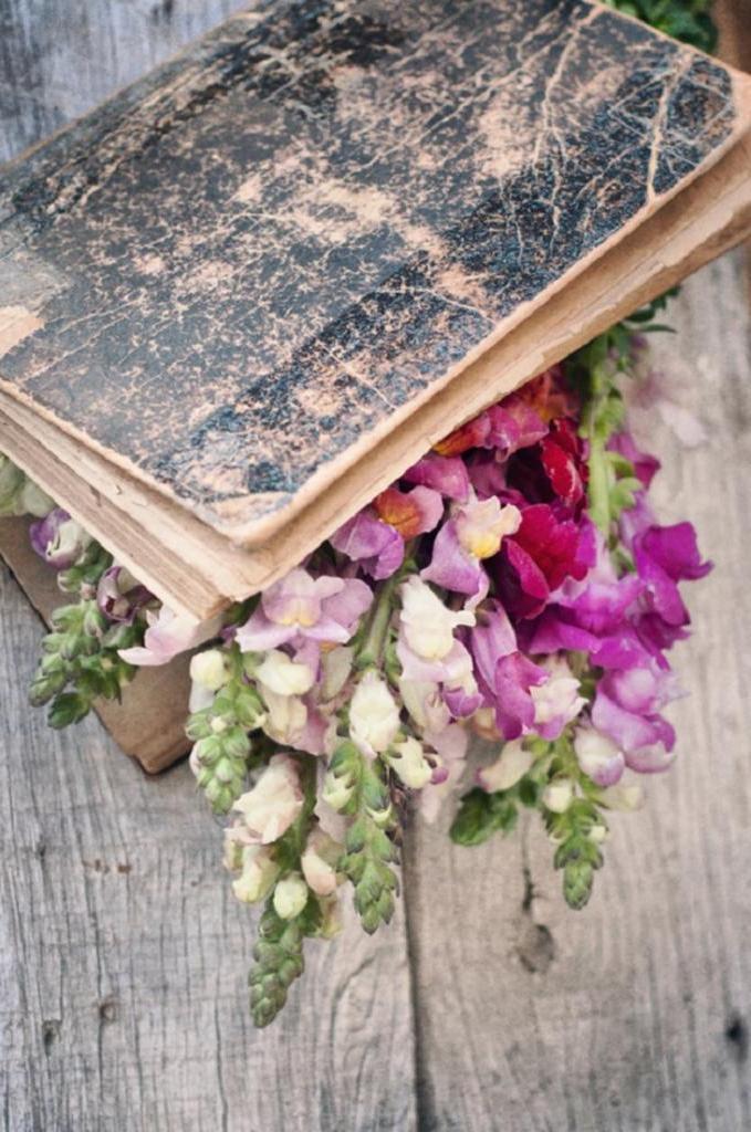 Орхидеи для Дев, лаванда для Рыб: из каких цветов нужно составлять свадебный букет разным знакам зодиака