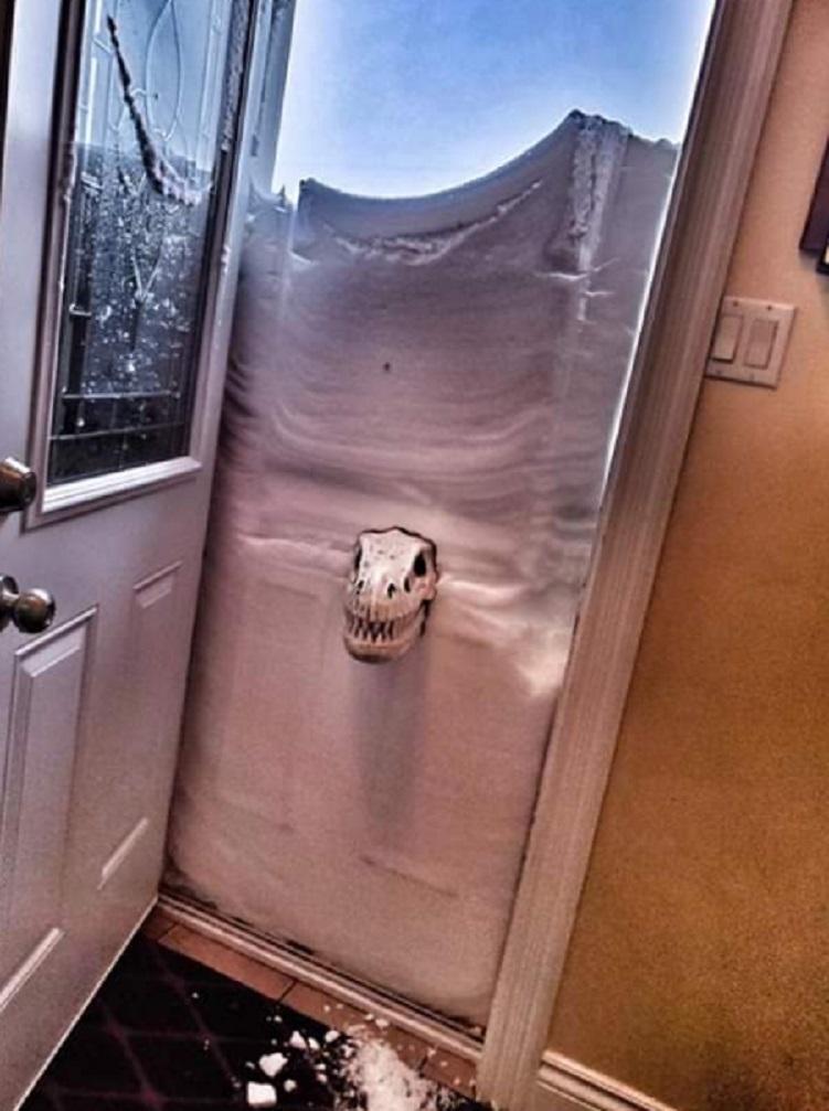 Снежная ловушка для канадцев. Жители не унывают - забавные фото пользователей