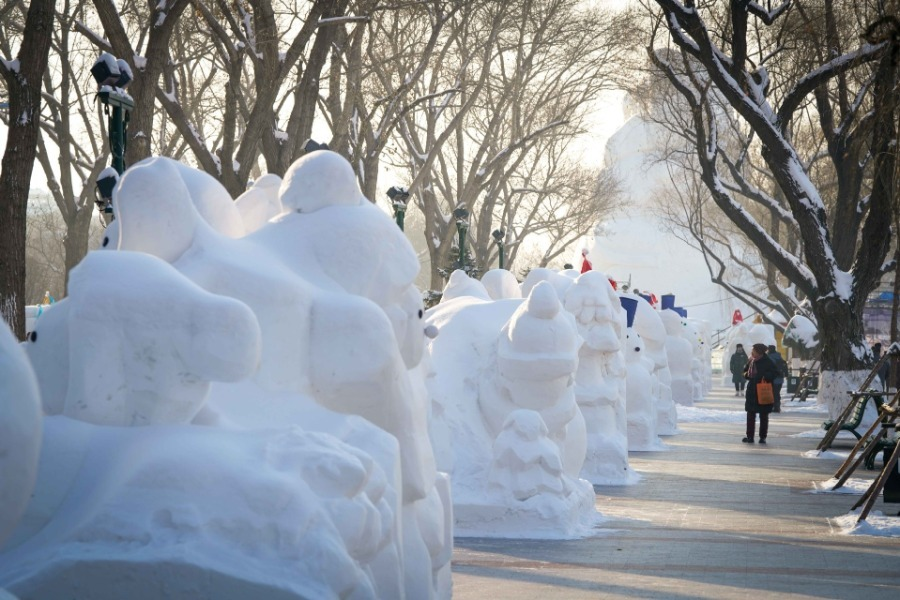 2020 снеговиков установили в китайском Харбине в честь Нового года: фото