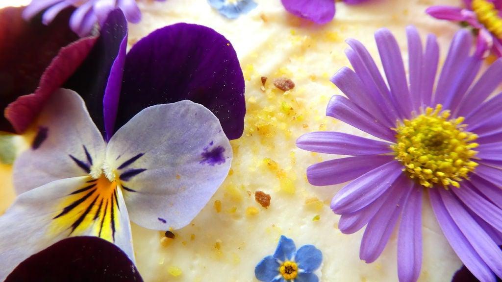 До весны еще далеко, а ярких красок хочется уже сейчас: готовим нежный торт с фиалками