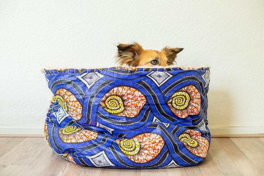 Хозяин сделал для своей собаки-бояки мягкую крепость, чтобы она чувствовала себя в безопасности