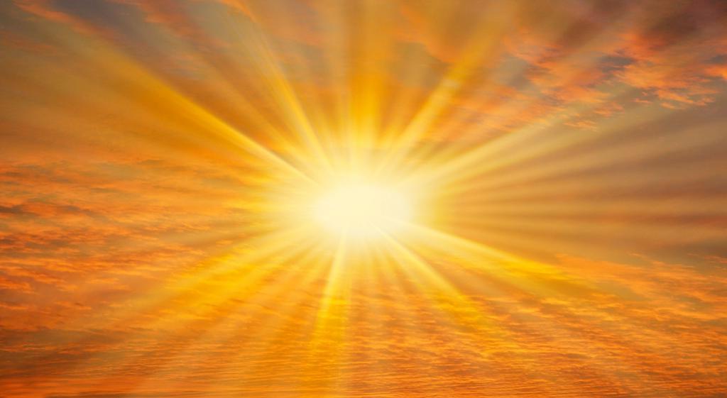 Жировые клетки чувствуют свет. Как нехватка солнечного света влияет на метаболизм