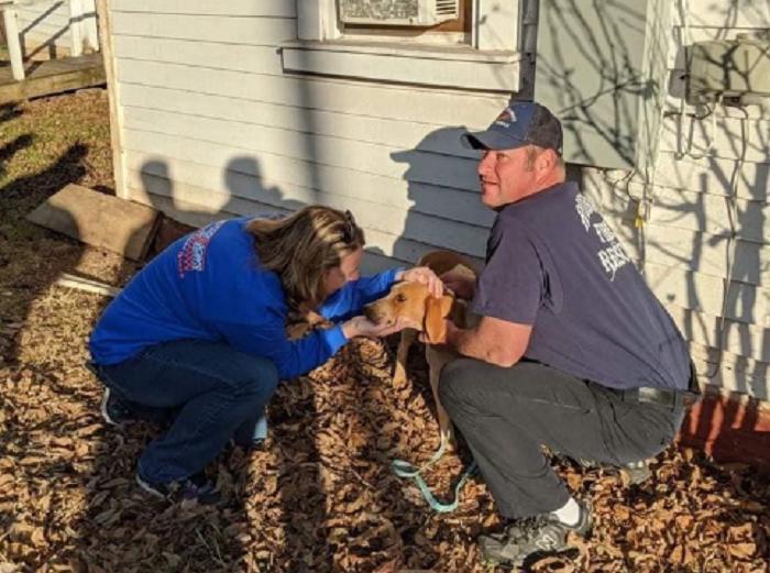 Владельцы заметили, что к их дому все время прибегает собака, поэтому решили вызвать спасателей