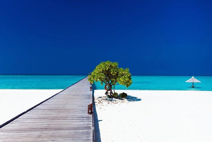 Лучшие варианты проведения тропических каникул: сюрреалистическая красота Мальдив уже долгие годы притягивает путешественников