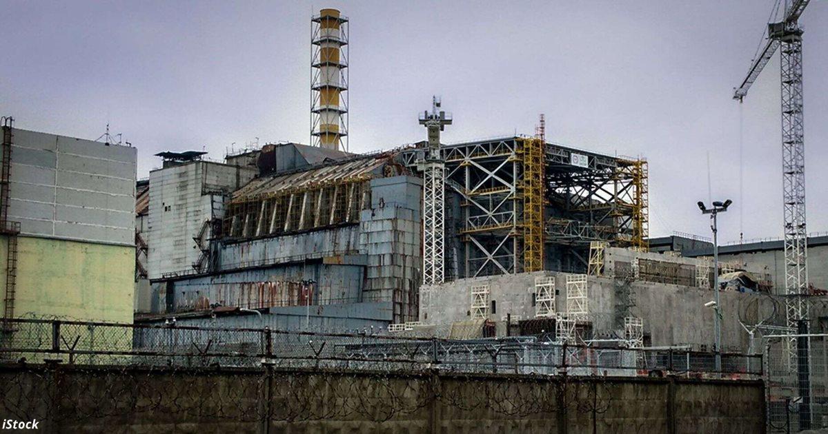 В Чернобыле появился грибок, который питается радиацией