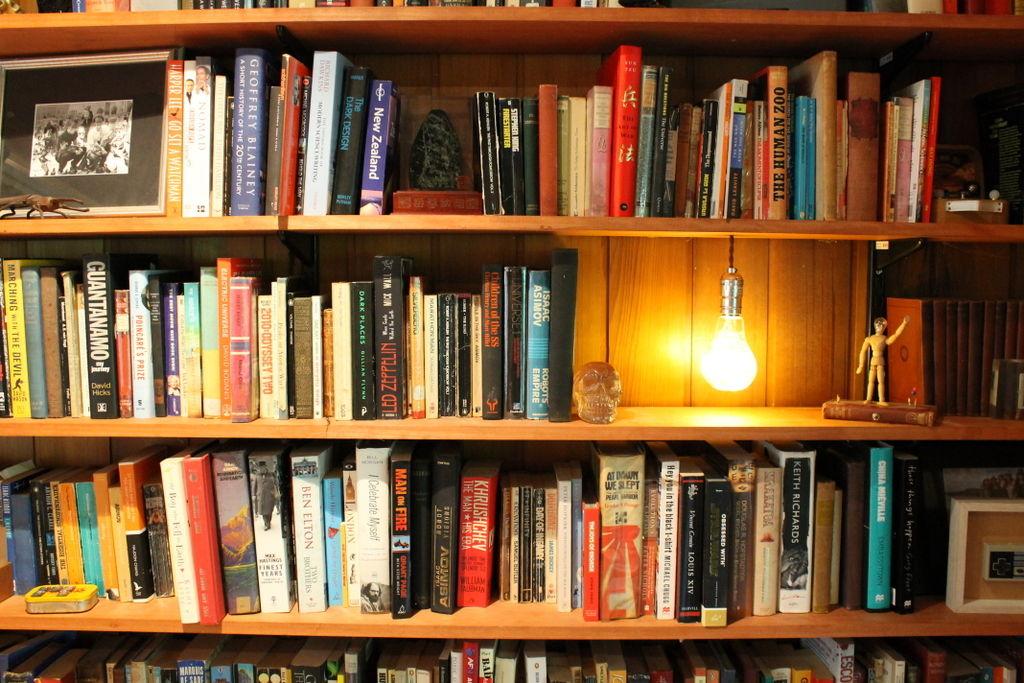 Всегда хотел, чтобы свет на книжной полке загорался