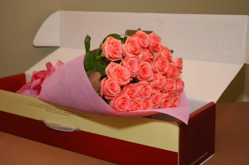Для забывчивых людей: в Новой Зеландии цветочный магазин на праздник предоставил специальную услугу