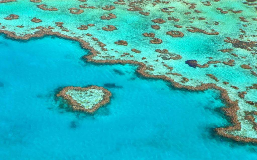 От дорог в деревушках до тропических островов: самые удивительные вещи в мире, имеющие форму сердца