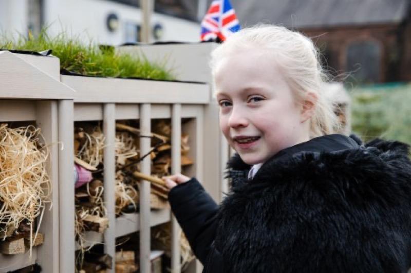 Чтобы привлечь внимание к проблеме экологии, дети построили целый дворец для жуков