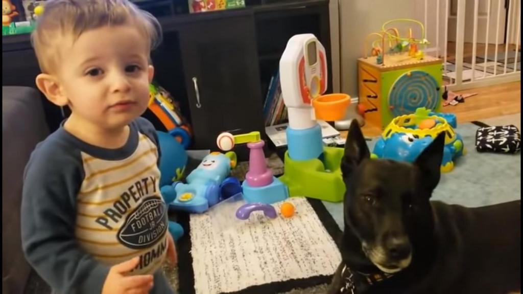 Малыш подошел к собаке, чтобы с ней поговорить. Мама записала диалог на видео