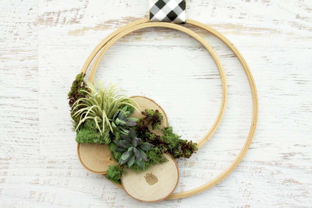 Суккуленты потрясающе смотрятся в интерьере: делаем декоративный венок из пяльцев, растений и мха