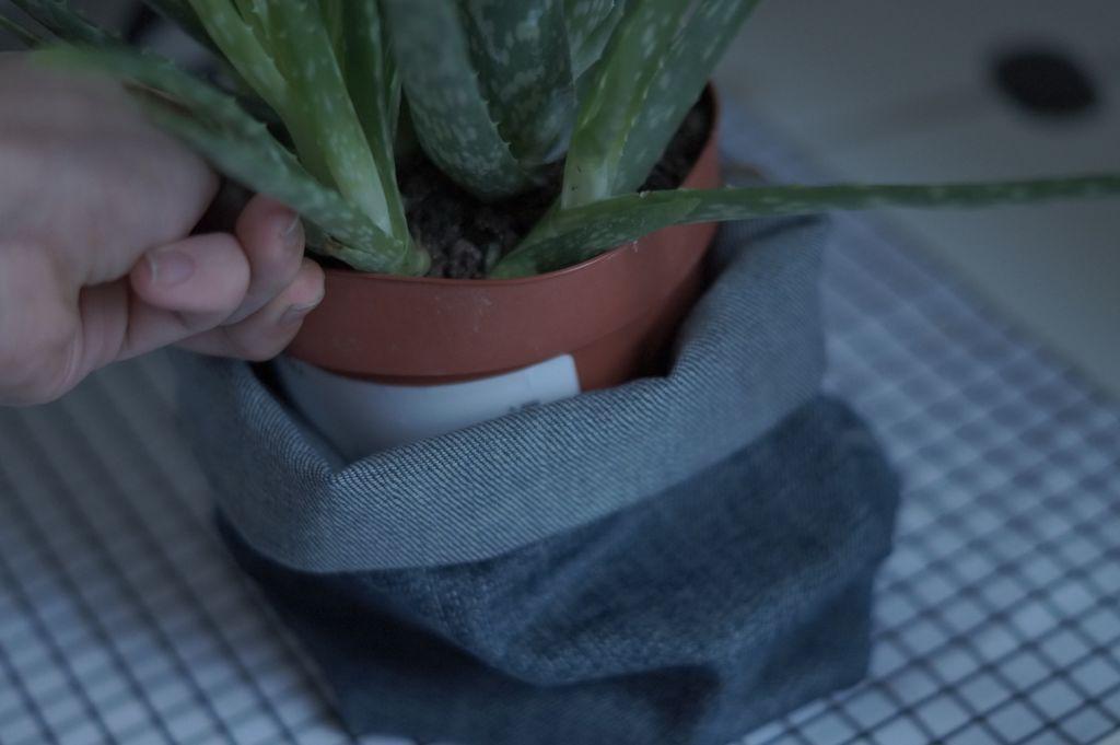 Некрасивые горшки для цветов прячу в чехлы из старых джинсов: делаю их своими руками