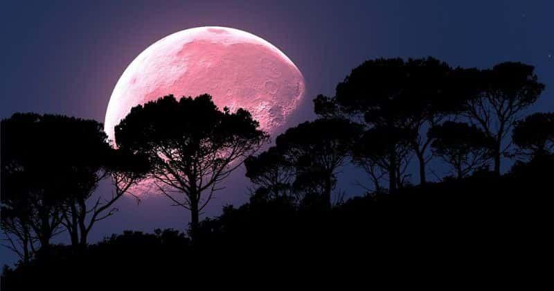 Седьмого апреля нас ждет полнолуние. Супер розовая луна апреля станет самым ярким ночным явлением 2020 года