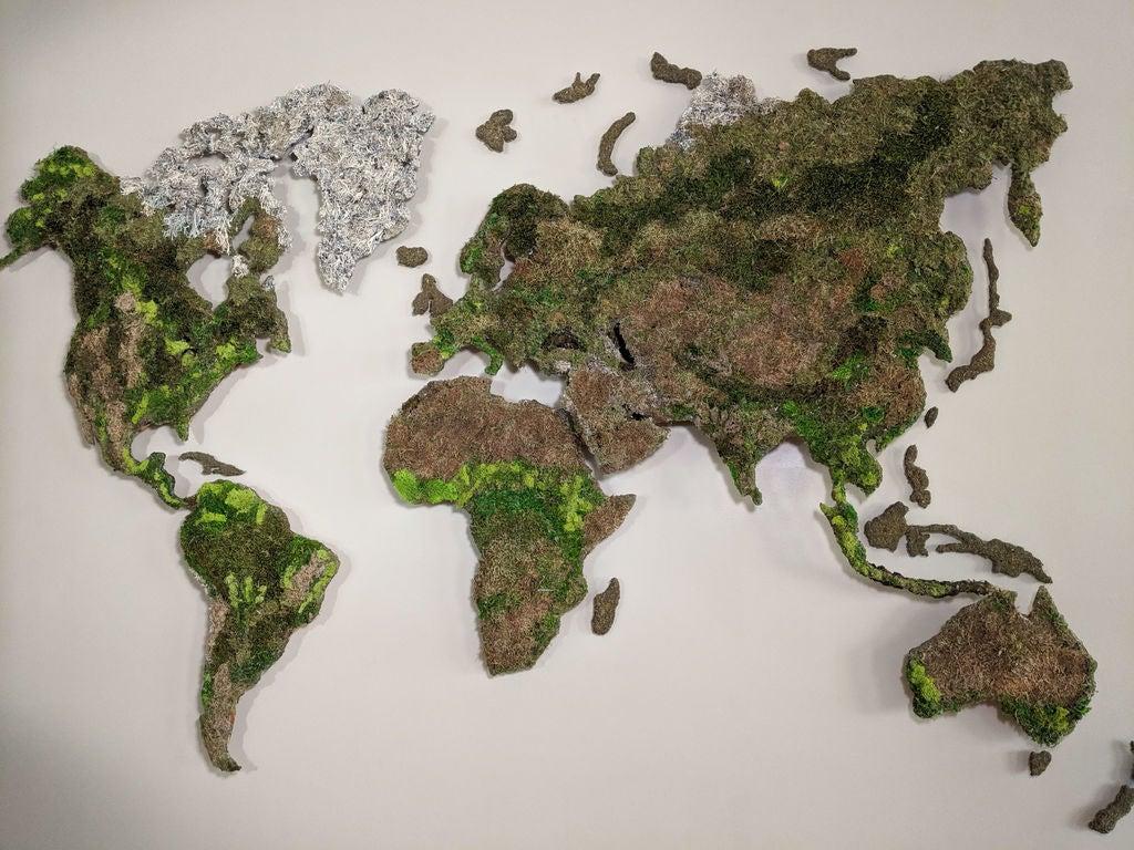 Карта мира с подсветкой и диодами в точках городов, покрытая мхом: подробная инструкция для создания оригинального украшения своими руками