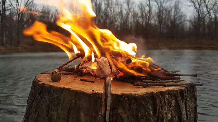 Удаление пней на участке с помощью выжигания: ждать полгода не нужно