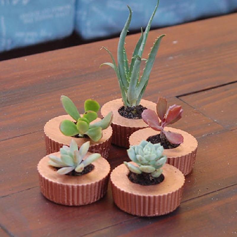 Кексики  для рассады и цветов, или Как сделать цветочные горшки в форме маффинов