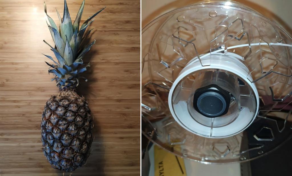 Кто проживает на дне океана?: чтобы отвлечь детей от просмотра мультиков, предложите им смастерить дом Губки Боба из настоящего ананаса
