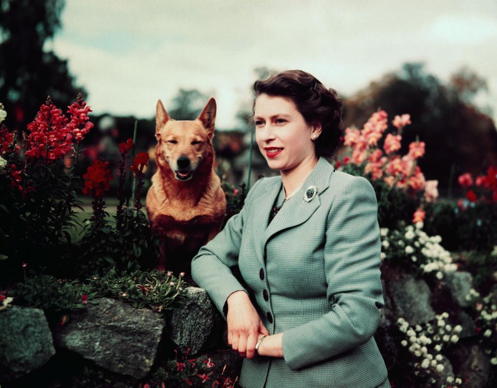 Елизавета II спряталась в кустах перед визитом президента Румынии: почему королеву Великобритании называют мастером игнора