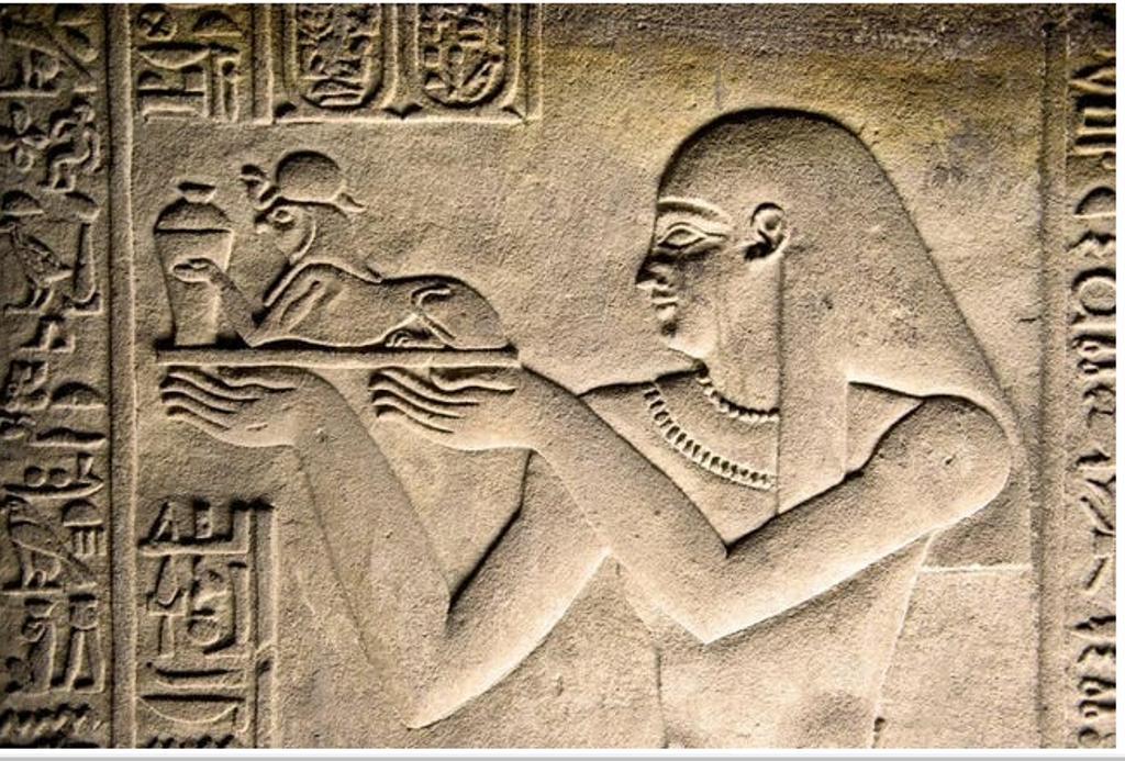 Первые питомцы наших предков. Человек давно начал приручать животных, и не всегда это были собаки